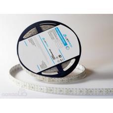 Светодиодная лента LP IP65 3528/240 LED (холодный белый, standart, 24)